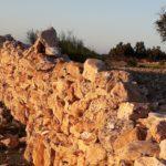 pierres-dorees-conte-beaujolais