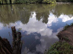 Sur le Lit de la rivière – Annulé –